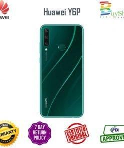 y6p green